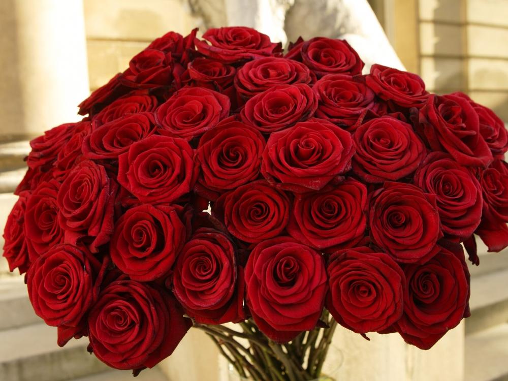 Роскошный букет цветов картинки 7