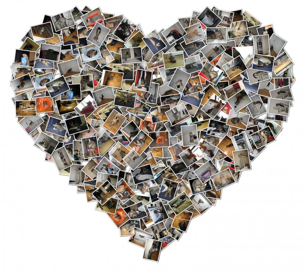 Сделать коллаж из фотографий своими руками онлайн